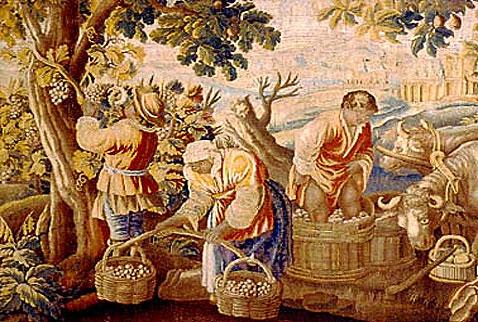 История виноделия испании harvesting and