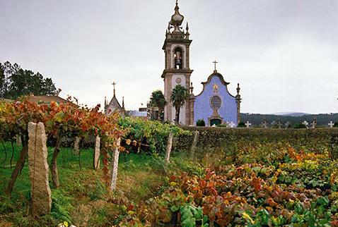 История виноделия Португалии